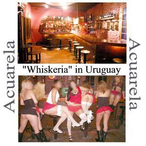 Whores in Uruguay
