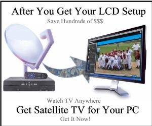 get satellite TV for your PC LCD